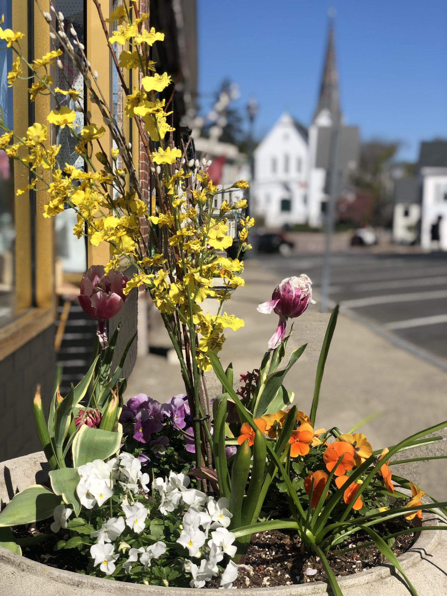 flowers-downtown-hingham