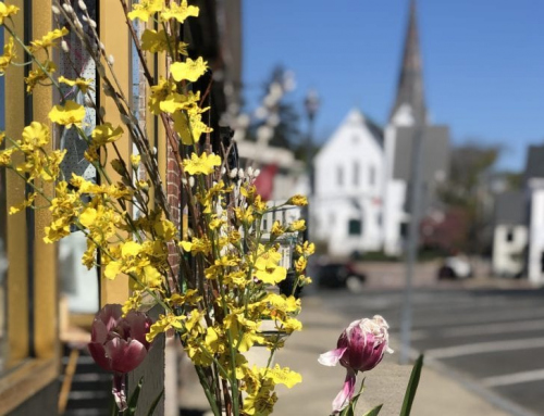 DOWNTOWN HINGHAM BUSINESSES ARE STRIVING TO THRIVE